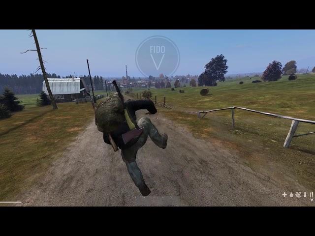 DayZ 0.63: beta animations