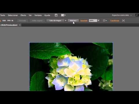 Cómo cortar una imagen en Illustrator