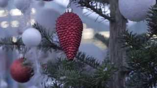 видео Откуда пошла традиция наряжать ёлку на новый год?