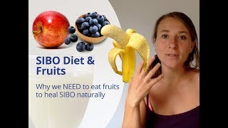 SIBO Diet and Fruits - How Fruits Help You to Heal from SIBO & the FODMAP diet is Bull*