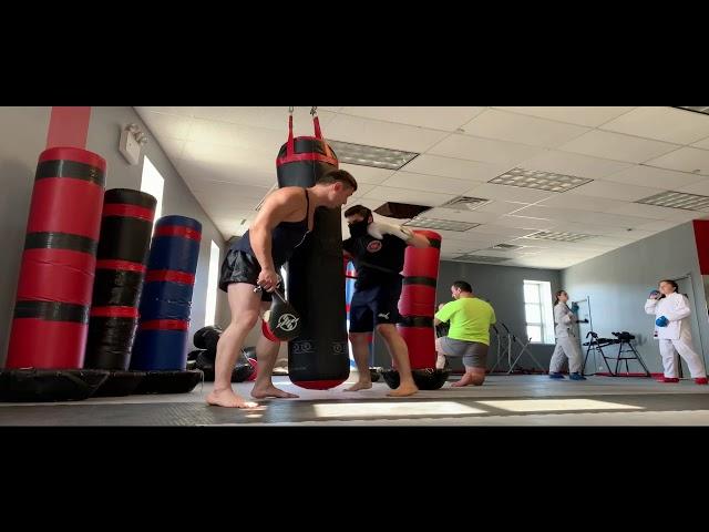 Training System - System Martial Arts # 2 Alex Lee