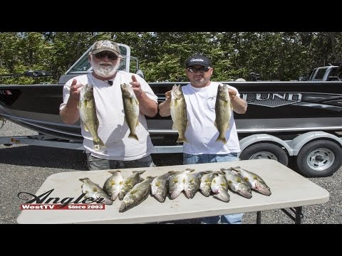 Columbia River Post Spawn Walleye Fishing