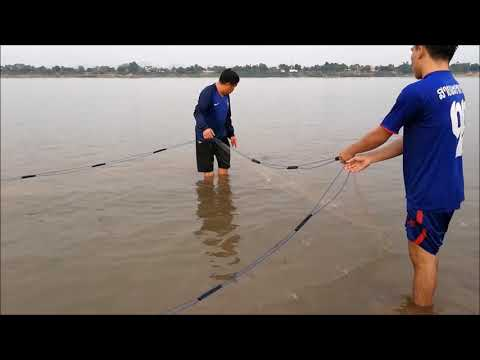 Catching fish in thai laos border - net fishing in Thakhek , Asian food