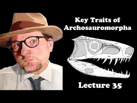 Lecture 35 Key Traits of Archosauromorpha: A new group of Diapsid Reptiles