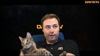 Day[9] as Cat Dad: The Ultimate Kitty Compilation