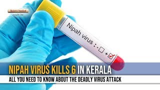 Nipah virus kills six in Kerala: All you need to know
