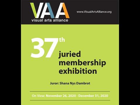 Visual Art Alliance Houston