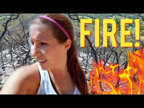 Caught in a WILDFIRE! 🔥 🔥 😱