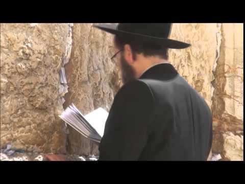 Videos - Viaje por Asia 1.0 - Palestina e Israel