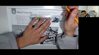 Publication Date: 2021-07-06 | Video Title: What Trees Do