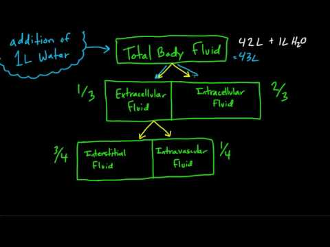 Body Fluid Compartments Overview