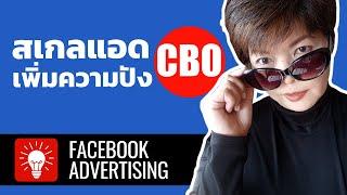 Campaign Budget Optimization  เพิ่มผลลัพธ์โฆษณาที่ง่ายที่สุด