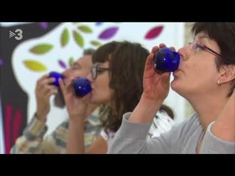 TV3 TN Comarques Centre de la Cultura de l'Oli de Catalunya