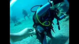 Scuba Diving, Mallorca 2014