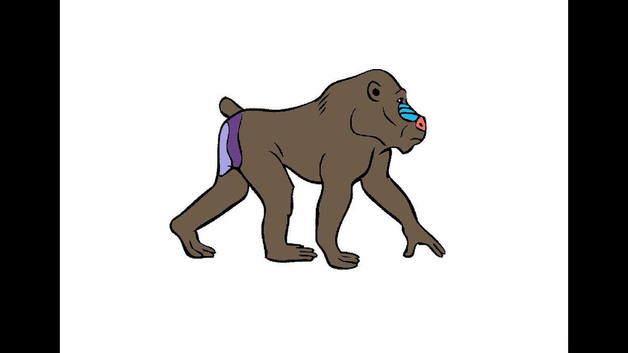 Как нарисовать Бабуина. Раскраска Бабуин для детей - YouTube