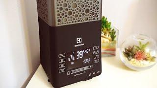 Увлажнитель воздуха ecoBIOCOMPLEX Electrolux EHU-3810D YOGAhealthline ОБЗОР - Senya Miro