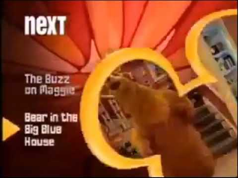 Disney Channel Next Bumper The Buzz On Maggie Bear In The Big Blue House 2006 Youtube The series centers on an ambitious and expressive tween fly named maggie pesky. youtube