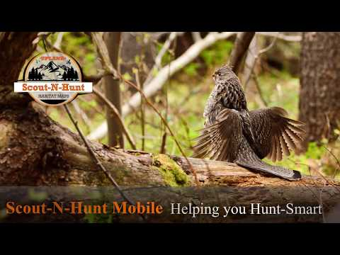 Scout N Hunt Upland Maps Android