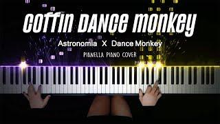 coffin DANCE monkey (mashup)   Piano Cover by Pianella Piano