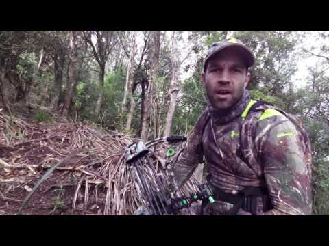 NZ Bow Hunting- Searching for Rusa
