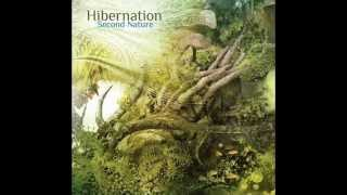 Hibernation-Taking Shape