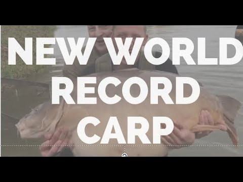 New World Record Carp MONSTER 49kg (108lbs) -BIGGEST CARP IN THE WORLD - เป็นปลามอนสเตอร์