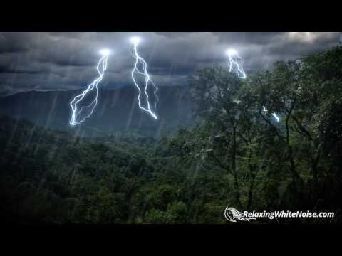Rain Forest Thunder & Rain Sleep Sounds | White Noise 10 Hou