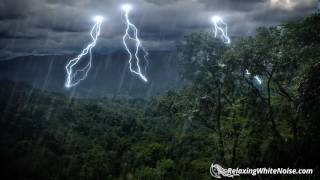 Rain Forest Thunder & Rain Sleep Sounds | White Noise 10 Hours