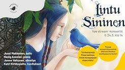Konserttikeskus esittää – Jussi Makkonen & Nazig Azezian: Lintu Sininen Live Stream @ Kumutalo