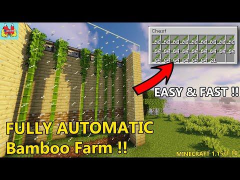 EASY Beginner Automatic