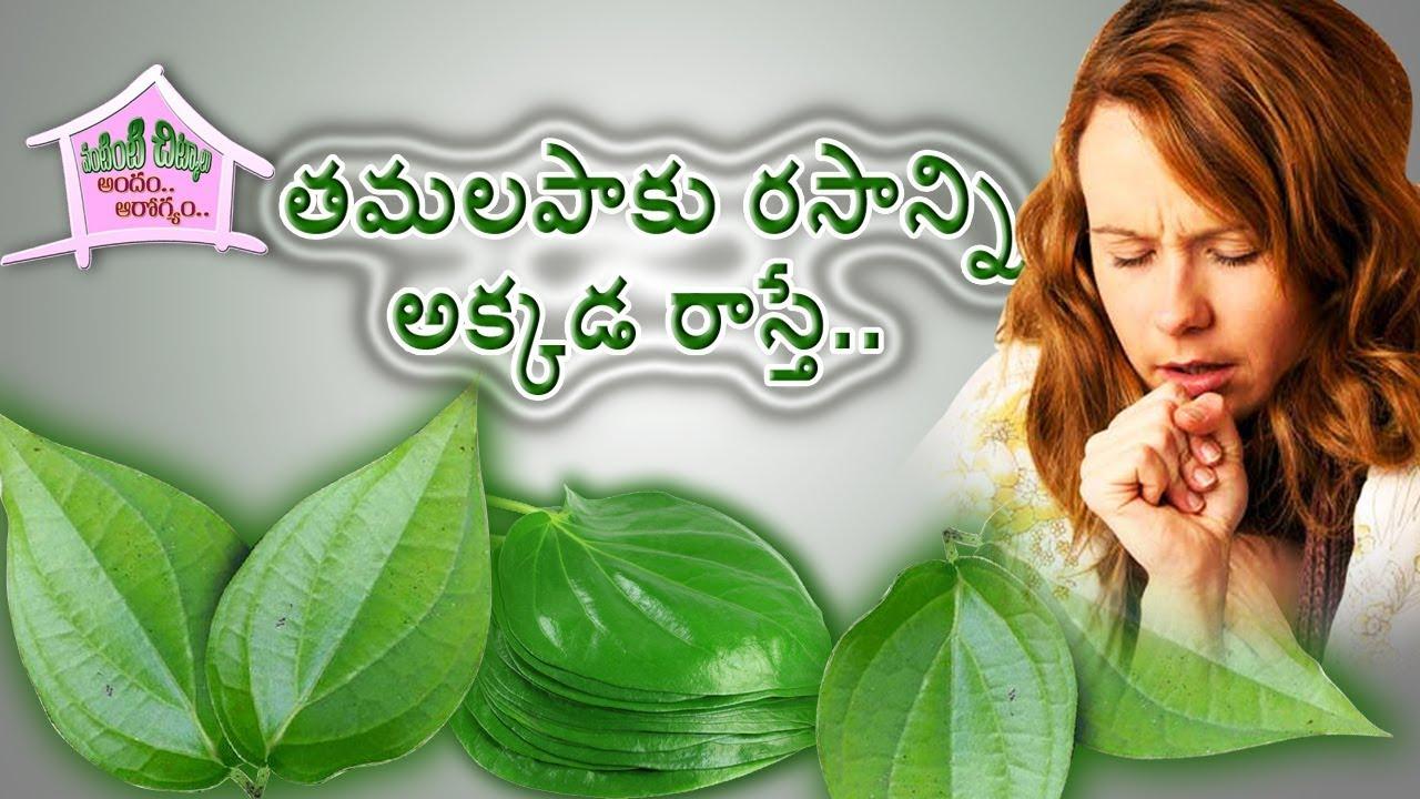 Watch 23 Amazing Medicinal Uses Of Betel Leaf (Paan Ka Patta) video