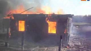 Краткое видео о том, к чему приводит выжигание сухой растительности