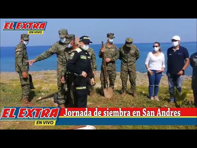 Jornada de Plantación de Arboles en San Andrés islas