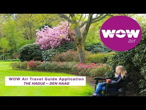 WOW air travel guide application | The Hague - Den Haag 🇳🇱