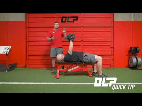 DB Bench Press Setup