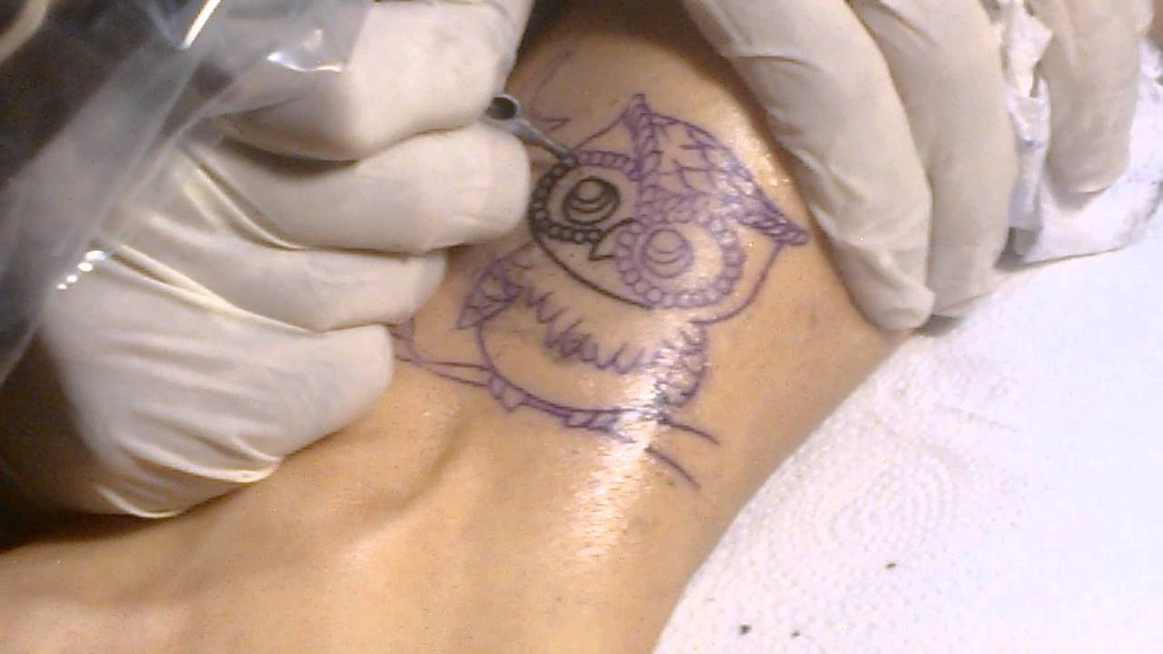 Tatuagem Coruja Feita Em Tartaruga Estudio Salvador