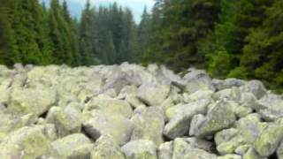 Vitosha - Stone River - Natural Phenomena thumbnail