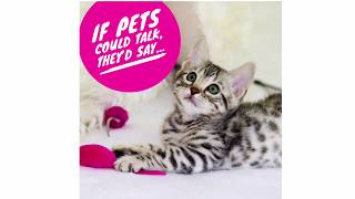 If pets could talk...
