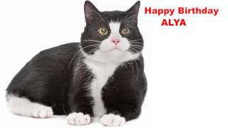Alya  Cats Gatos - Happy Birthday