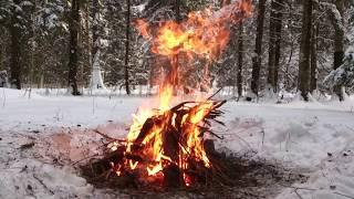 Костер и печеная картошка в углях зимой на морозе в лесу