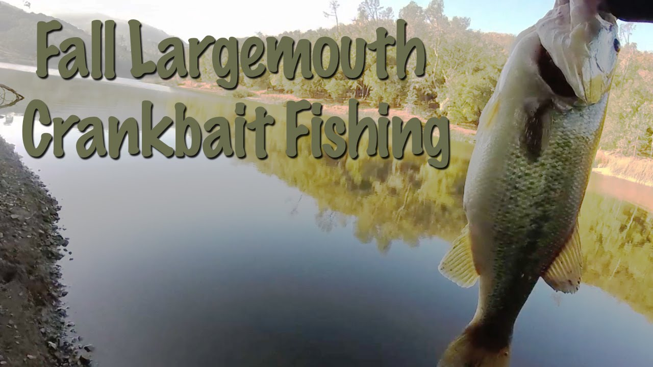 Great day fall largemouth crankbait fishing at lake for Lake hennessey fishing