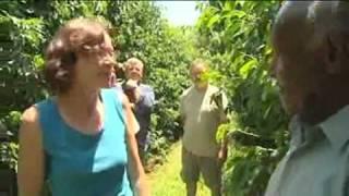 Fair Trade Farm Hands PNG