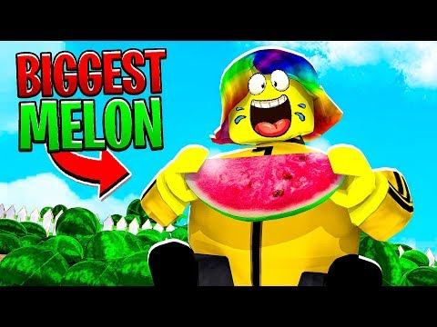Roblox Watermelon Verification I Ate The World S Biggest Watermelon Roblox Youtube
