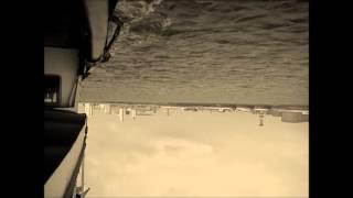 Trout Heart Replica - Amanda Palmer and the Grand Theft Orchestra