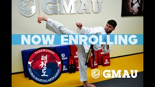 Global Martial Arts University Taekwondo Course - Learn and Earn Rank at Home