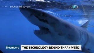 How Technology Has Revolutionized Shark Week