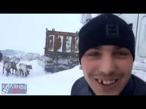 #11 КАЛЯН86 / Север - зимник / 2015
