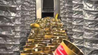Hur man tillverkar Surströmming! MP3