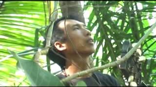 Lagu pop indonesia terbaru 2015 : Filos - Tak Mengapa (Band Populer)