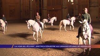 Yvelines | « La voie de l'écuyer », spectacle équestre aux grandes écuries de Versailles